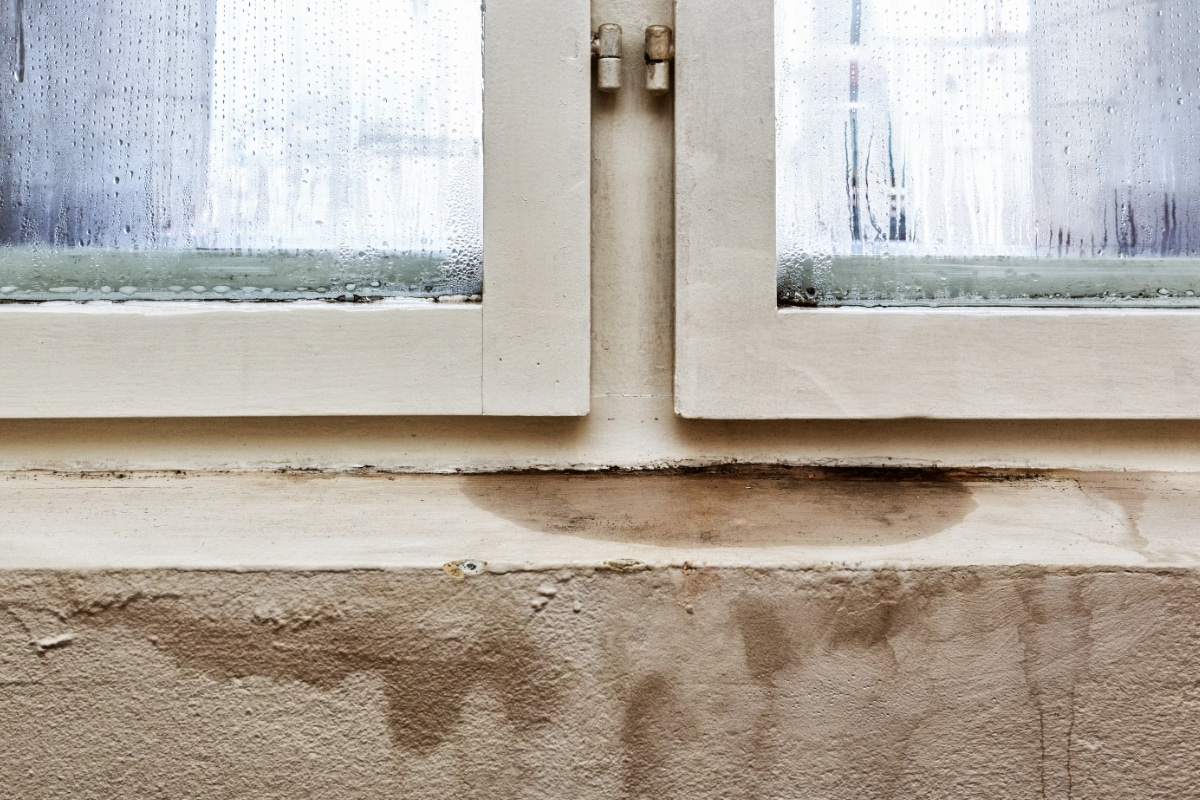 condensation damp treatment