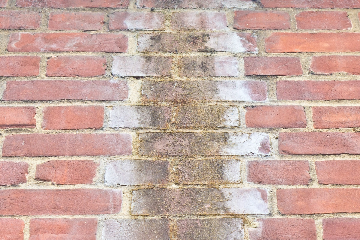penetrating damp damp treatment