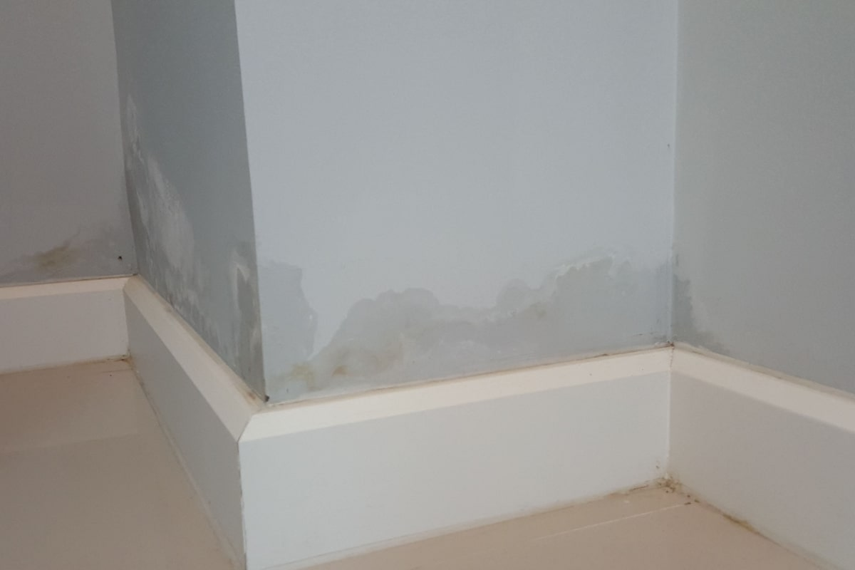 rising damp damp treatment